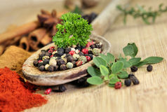 Exotically spice mix Royalty Free Stock Photography
