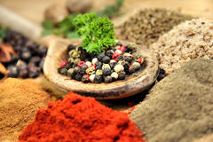 Exotically spice mix royalty free stock photos