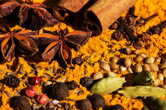 Exotically Spice Mix Stock Images