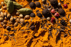 Exotically Spice Mix Royalty Free Stock Images
