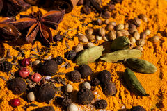 Exotically Spice Mix Stock Photography
