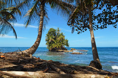 Exoticism in Panama. Beautiful tropical island view from the coast under shade of coconut trees, Caribbean, Bocas del Toro, Panama Stock Photography