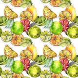 Exoticlemon citrurs i en vattenfärgstilmodell Arkivfoton