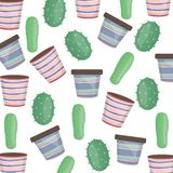 Exotics cactus plants and ceramic pots pattern. Vector illustration design royalty free illustration