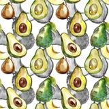 Exotisch avocado wild fruit in een patroon van de waterverfstijl stock illustratie