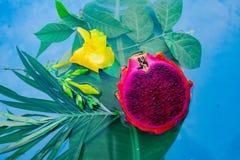 Exotisch Draakfruit in water met grean blad en gele bloem stock afbeeldingen