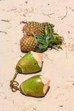 Exotisch Fruit Royalty-vrije Stock Fotografie