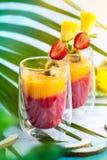 Exotisch fruit smoothie stock foto