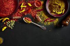 Exotisch Gewürz-Mischung - Gewürz, Kräuter, pulverisieren Draufsicht über dunklem Hintergrund Kochen und würziges Lebensmittelkon lizenzfreies stockfoto
