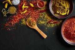 Exotisch Gewürz-Mischung - Gewürz, Kräuter, pulverisieren Draufsicht über dunklem Hintergrund Kochen und würziges Lebensmittelkon stockfotos