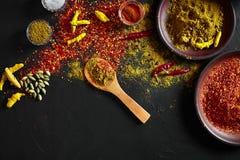 Exotisch Gewürz-Mischung - Gewürz, Kräuter, pulverisieren Draufsicht über dunklem Hintergrund Kochen und würziges Lebensmittelkon stockfoto
