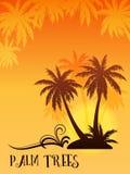 Exotisch Landschap met Palm Stock Afbeeldingen