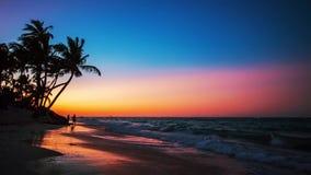 Exotisch Strand in Dominicaanse Republiek stock videobeelden
