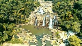 Exotisch tropisch bos met mooie waterval en rivier stock videobeelden