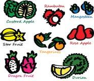 Exotisch tropisch fruit stock illustratie