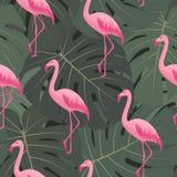 Exotisch tropisch naadloos patroon met roze flamingo's, groene monsterabladeren Stock Foto's