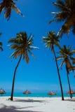 Exotisch whitesandstrand met blauwe overzees en palmen, loungues Stock Afbeeldingen