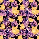 Exotische Blumen Nahtloses Muster des Aquarells Stockbilder