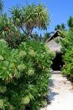 Exotische bungalow de Maldiven Stock Foto