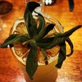 Exotische cocktail Royalty-vrije Stock Fotografie