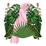 Exotische en tropische vogel royalty-vrije illustratie