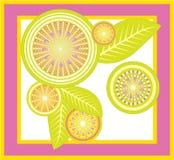 Exotische Früchte lizenzfreie abbildung