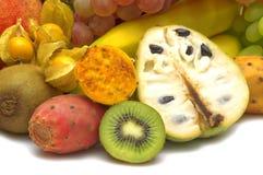 Exotische Früchte Lizenzfreie Stockfotografie
