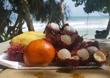 Exotische Früchte auf der Ozeanküste Lizenzfreie Stockfotos