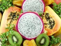 Exotische Frucht Lizenzfreies Stockbild