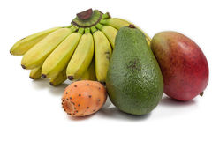 Exotische Fruchtfarben Stockfotos