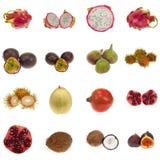 Exotische fruitInzameling stock afbeeldingen