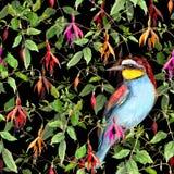 Exotische fuchsiakleurig bloemen en wildernisvogel op zwarte achtergrond Naadloos BloemenPatroon watercolor Stock Fotografie