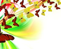 Exotische gekleurde butterfiles achtergrond Vector Illustratie