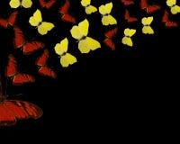 Exotische gekleurde vlindersachtergrond Stock Illustratie