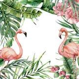 Exotische Karte des Aquarells mit Flamingo Handgemalte Blumenillustration mit Banane und Kokosnusspalmblätter und -niederlassunge lizenzfreie abbildung