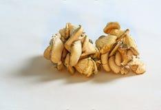 Exotische Pilze auf weißem Segeltuch von lokalem Landwirt ` s Markt Lizenzfreie Stockfotos