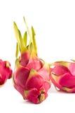 Exotische rosa Drachefrüchte Stockbild