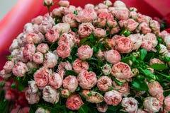 Exotische rozen van scharlaken rode elite moderne verscheidenheden in het boeket als gift Achtergrond Selectieve nadruk royalty-vrije stock afbeelding