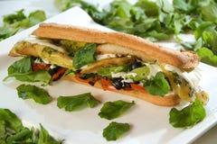 Exotische Sandwich Royalty-vrije Stock Foto's