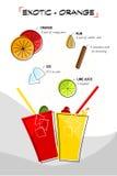 Exotische sinaasappel vector illustratie