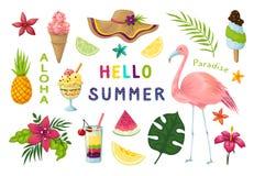 Exotische stickers Leuke de zomer tropische elementen, flamingovruchten de inzameling van het de bladerenplakboek van cocktailsbl royalty-vrije illustratie