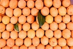 Exotische thailändische Frucht. Maprang, marianische Pflaume, Gandaria, marianisch Stockbilder