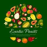 Exotische tropische verse vruchten vectoraffiche Stock Fotografie