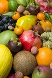 Exotische tropische vruchten royalty-vrije stock fotografie