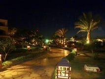 Exotische tuin in Sharm el Sheikh, Egypte Royalty-vrije Stock Afbeeldingen