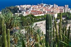 Exotische Tuin van Monaco Stock Foto's