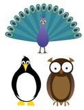 Exotische vogels Stock Foto's