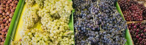 Exotische vruchten Marktkraam met verscheidenheid van organische vruchten Kleurrijke vruchten in de markt Heldere de zomerachterg stock afbeelding
