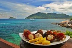 Exotische vruchten plaat Stock Foto