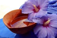 exotische wellness Royalty-vrije Stock Fotografie